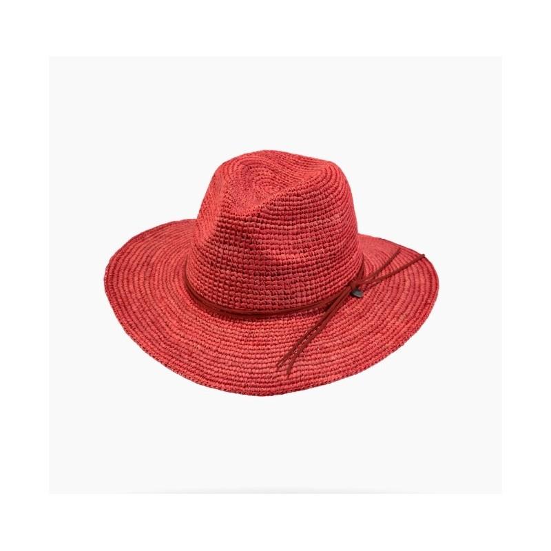 Chapeau CELERY HAT - Barts